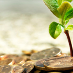 sustainable-responsible-ethical-investments